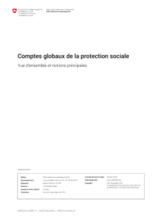Comptes globaux de la protection sociale: Vue d'ensemble et notions principales